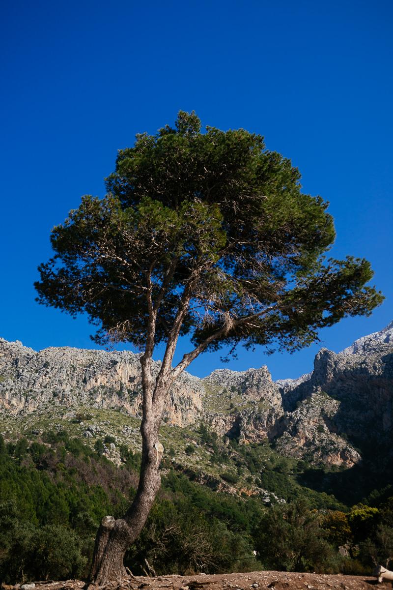 RoadTrip-Mallorca-Shooting