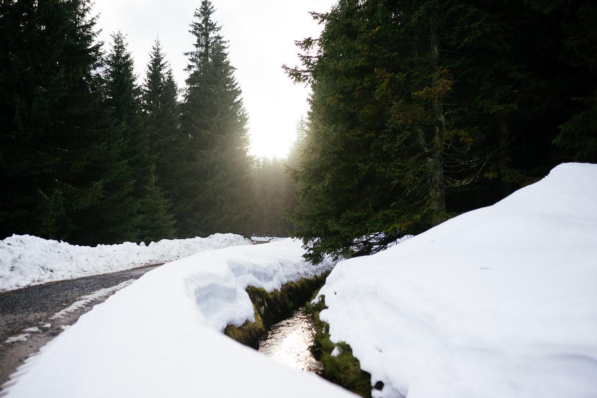 Harz Meet Up Schnee Regen