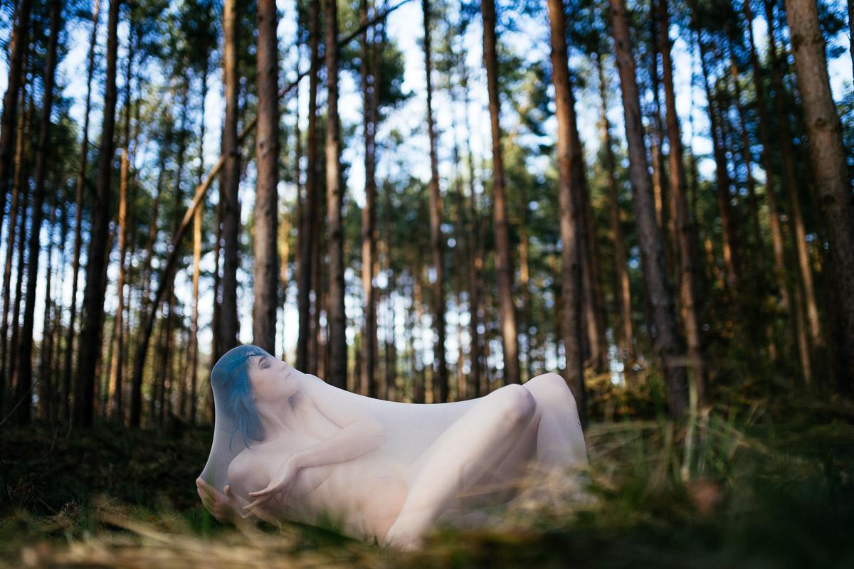 Kokon Wald Portrait Blau